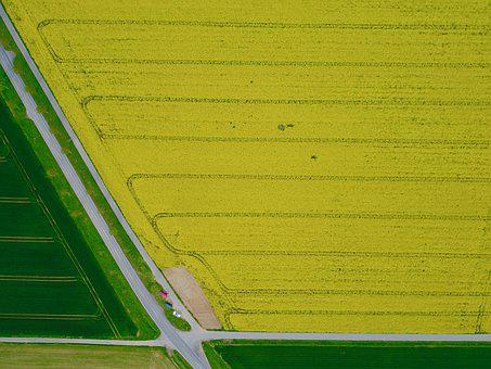 Aerial View, Field, Agriculture, Landscape