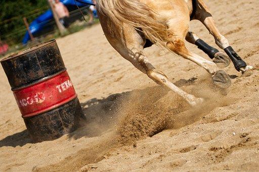Horse, Hooves, Horse Riding, Western, Feet, Barrel