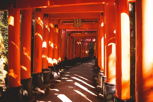 Torii, Tradition, Travel, Culture, Asia, Human
