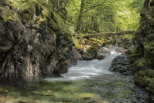 Hiking, River, Nature, Landscape, Pierre, Mountain
