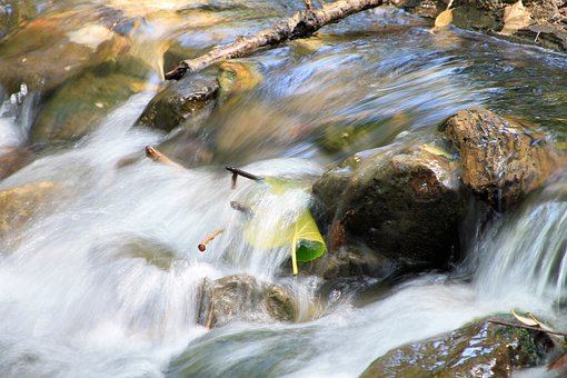 River, Mountain, Water, Leaf