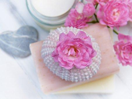 Soap, Natural Soap, Goat's Milk, Rose, Sea Urchins