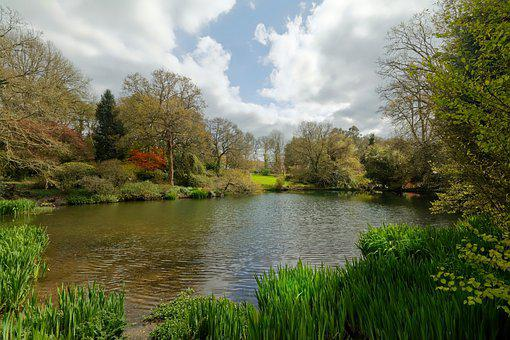 Lake, Nature, Landscape, Water, Sky, Serenity
