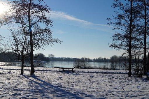 Snow, White, Winter, Cold, Nature, Tree, Sky, Sun
