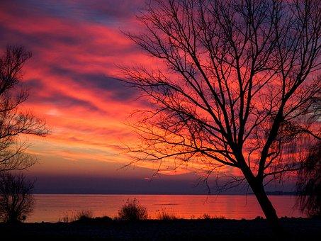 Sunset, Evening, Dark, Landscape, Lake, Winter, Trees