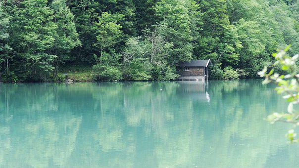 Lake, House, Idyll, Nature, Landscape, Water, Forest