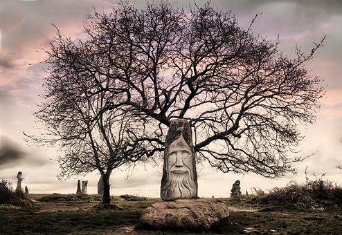 Tree, Mystery, Legend, Atmosphere, Light, Landscape