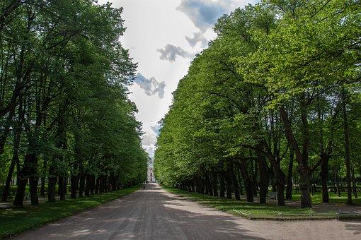 Alley, Park, Road, St Petersburg Russia, Pavlovsk