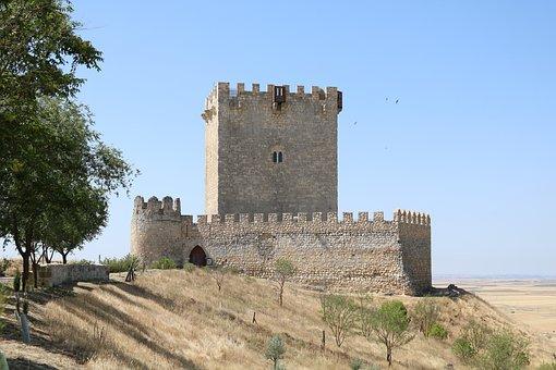 Castle, Valladolid, Tiedra, Spain, Stone, Magpie, Tower