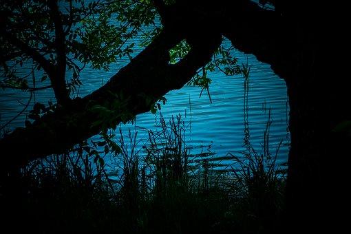 Still Life, Water, Surface, Lake, Dim, Blue