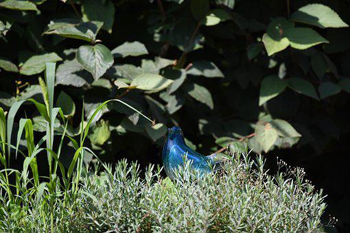Figurine, Glass, Bird, Blue, Plants, Garden, Decoration