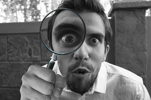 Magnifying, Glass, Detective, Looking, Lens, Proof
