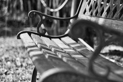 Bench, Park, Rest, Nature, Relaxation, Wood, Writer