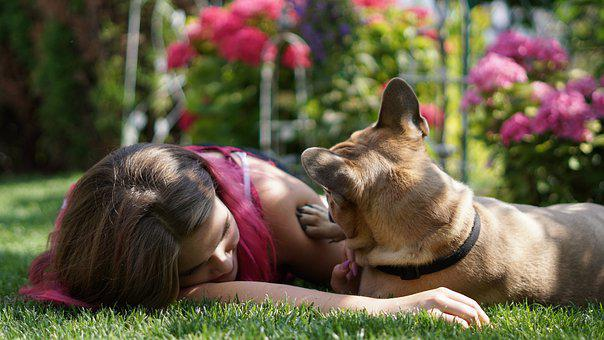 Girl, Woman, Young, Human, French Bulldog, Dog, Bulldog