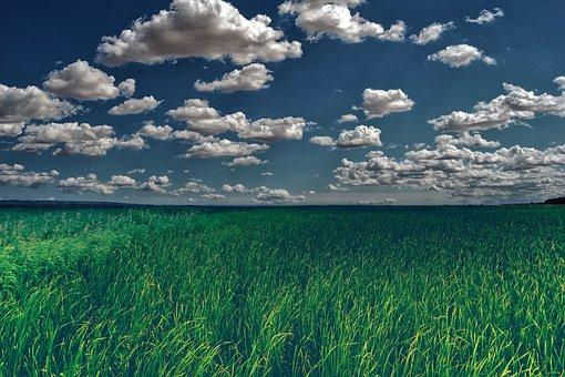Landscape, Field, Grass, Sky, Clouds