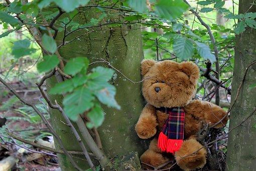 Teddy, Bear, Tree, Forest, Wood, Cute, Soft Toy