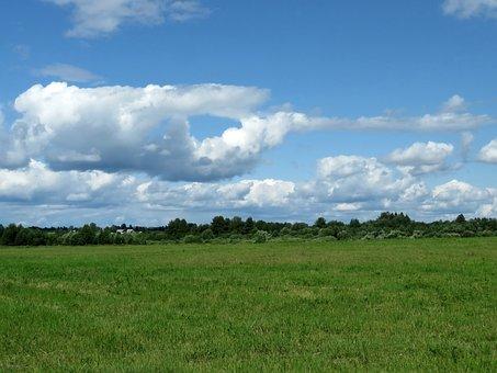Field, Meadow, Sky, Landscape, Green, In The Summer Of