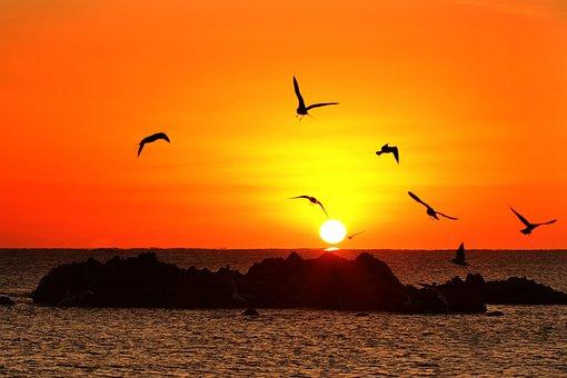Sunrise, Landscape, Nature, Sky, In The Evening, Solar