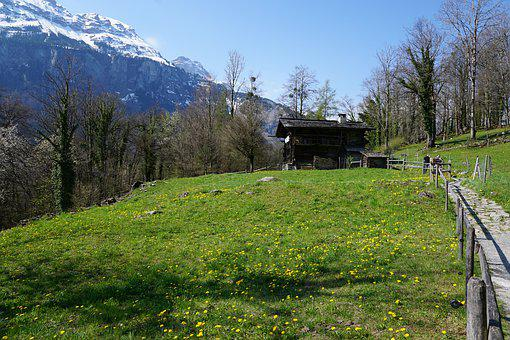 Switzerland, Village, Mountain, Summer, Meadow, Hill
