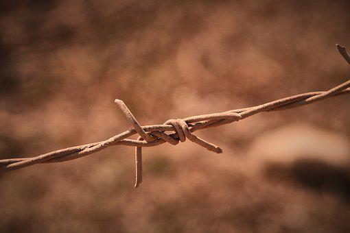 Barbed Wire, Dusty, Dirty, Barrier, Demarcation, Wire