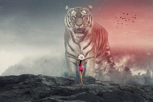 Manipulation, Tiger, Fog, Woods, Rock, Woman, Birds
