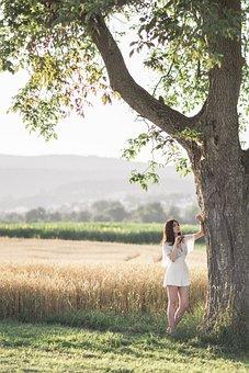 Wheatfield, Yellow, Landscape, Clouds, Purenature