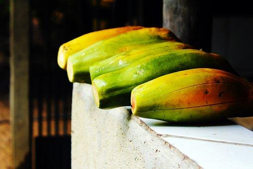 Fruit, Papaya, Healthy, Mature, Nutrition, Food, Nature