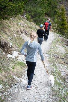 Hiking, Hike, Away, Nature, Alpine, Trail, Human