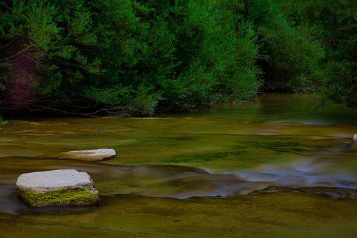 River, Forest, Nature, Water, Trees, Landscape