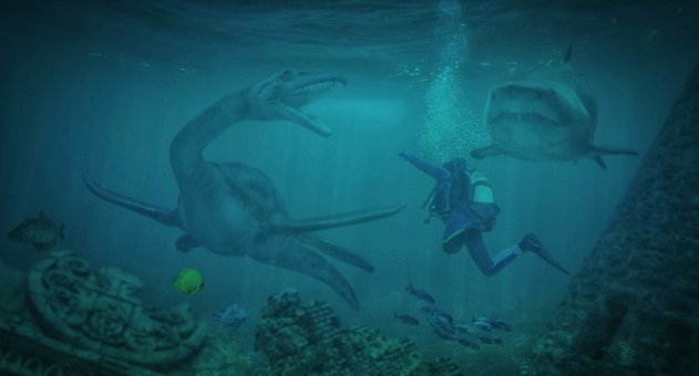Diving, Sea, Water, Underwater World, Ocean, Divers