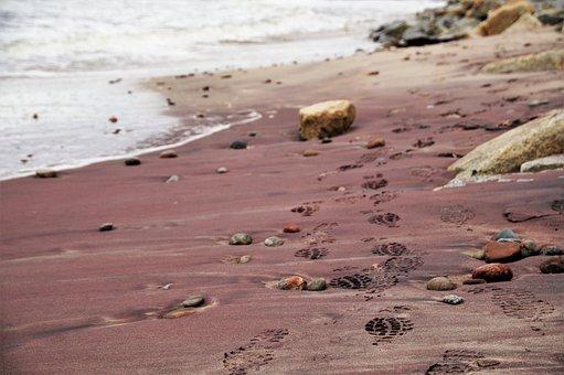 Sea, Beach, Coast, Sand, Violet, Red, Tracks, Prints
