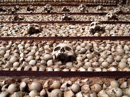 Bone, Skull, Skeleton, Death, Dead