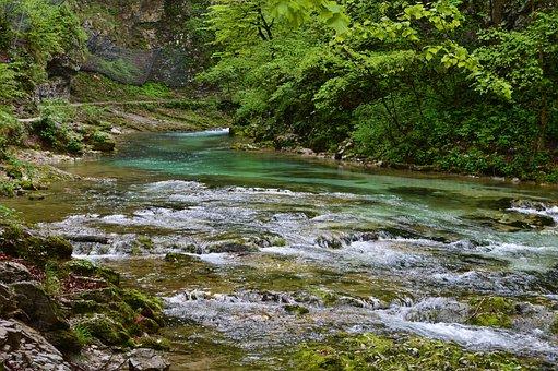 Slovenia, Gorge, Vintgar, River, Tourism, Forest
