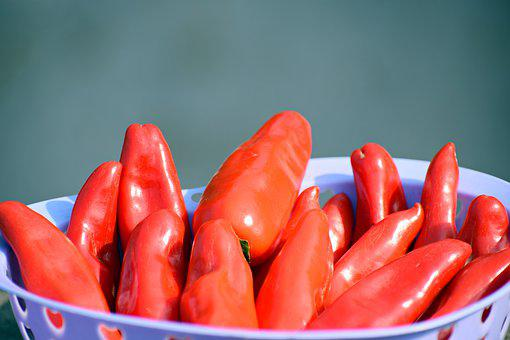 Red, Chilies, Food, Pepper, Cooking, Spice, Hot