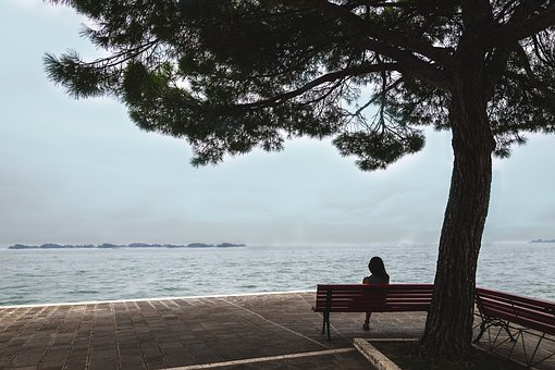 Woman, Tree, View, Sea, Silent, Mood, Person, Nature