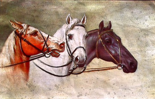 Horse, Animal, White, Black, Antique, Vintage, Old