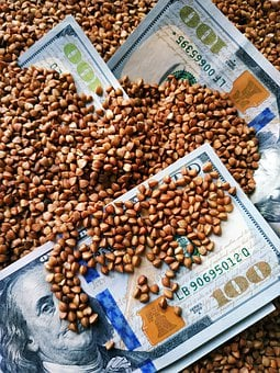 Buckwheat, Agriculture, Price, Harvest