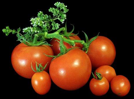 Tomatoes, Vegetables, Food, Oregano, Herb, Cooking