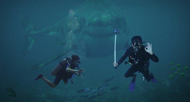 Divers, Photomontage, Composing, Hai, Risk, Diving, Sea
