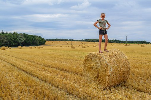 Child, Hay, People, Hay Bale, Nature, Countryside