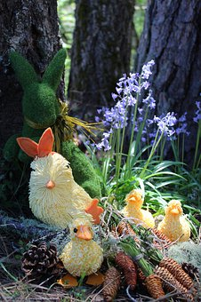 Spring, Easter, Nature, Decoration, Holiday, Foliage
