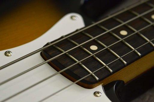 Bass, Music, Bassguitar, Strings, Rock, Low, Musician