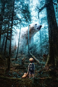 Bear, Forest, Baby, Surrealism, Story, Photoshop