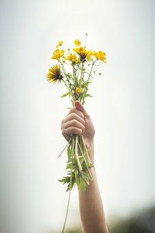 Flowers, Hand, Bouquet, Summer, Joy, Happiness