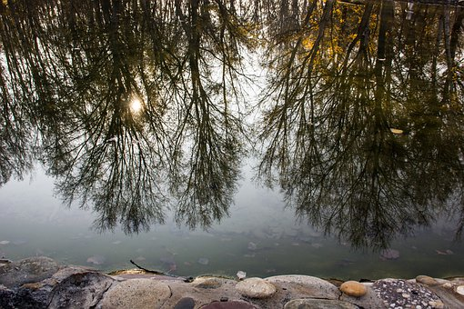 Lake, Reflection, Waters, Trees, Water, Stones