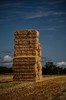 Straw, Bale, Straw Bales, Field, Agriculture, Harvest