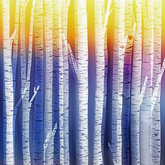 Birch Tree Background, Scrapbooking, Blue, Trees, Birch