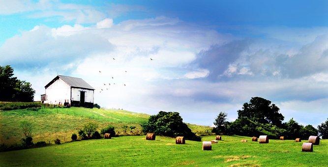 Shenandoah Valley, Barn, Farm, Countryside, Landscape
