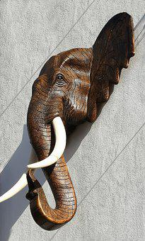 Elephant, Pachyderm, Trunk, Colorful, Animals, Ivory