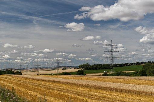 Field, Grain, Wheat, Cereals, Agriculture, Cornfield